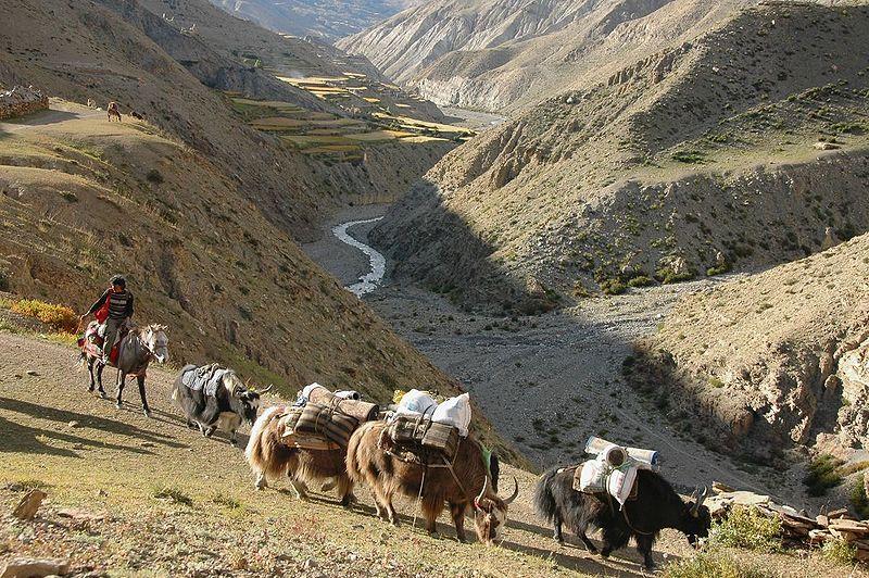 OZN-uri în Himalaya