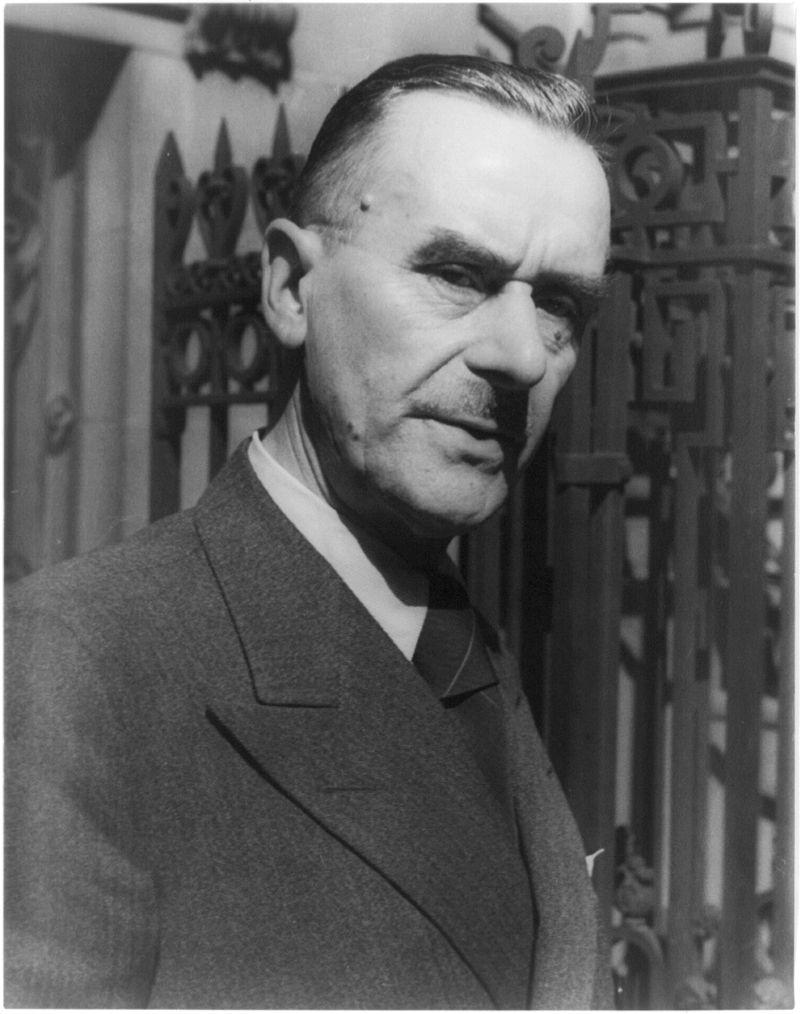 Thomas Mann despre durere